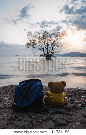 Teddy Bear With Sea In Twilight Blur Background