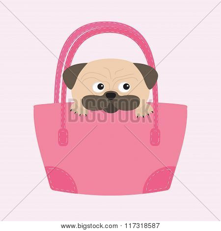 Pug Dog Mops In The Bag. Cute Cartoon Character. Flat Design. Isolated. Wite Background.