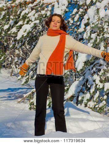 Sunny Winter Gladness