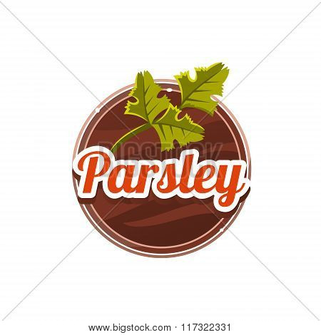 Parsley Spice. Vector Illustration.