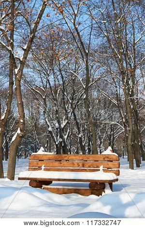 Wooden bench in the winter city park. Bright sunny day and snow.