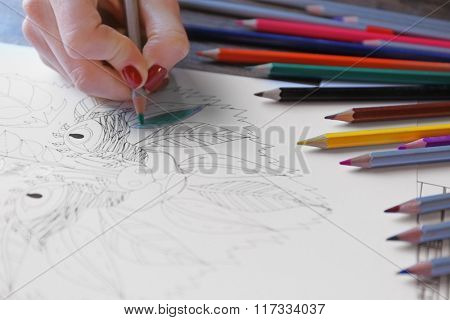 Female hand painting anti stress colouring with green pencil