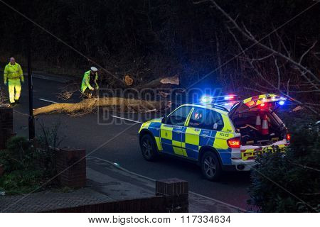 SOUTHAMPTON, ENGLAND - February 8 2015: Following Storm Imogen, Emergency services help to remove a fallen tree from the road,  on the edge of The Common, Southampton, UK.
