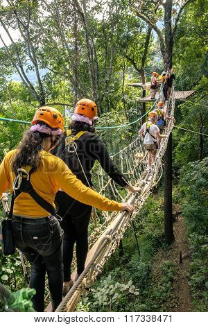 Tourists Walk On The Rope Bridge Walkway Through The Treetops In A  Forest