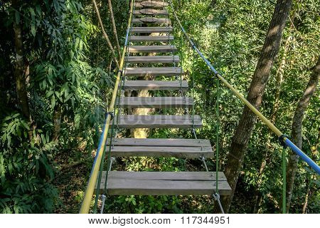 Rope Bridge Walkway Through The Treetops In A  Forest