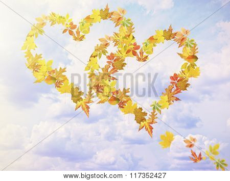 Hearts of different  leaves, on sky background
