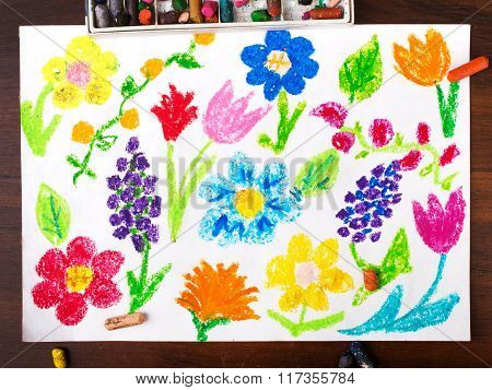 miscellaneous types of flowers