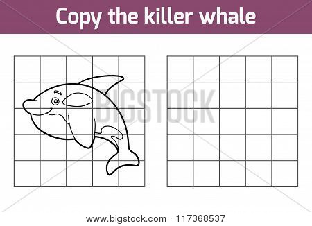 Copy The Picture (killer Whale)