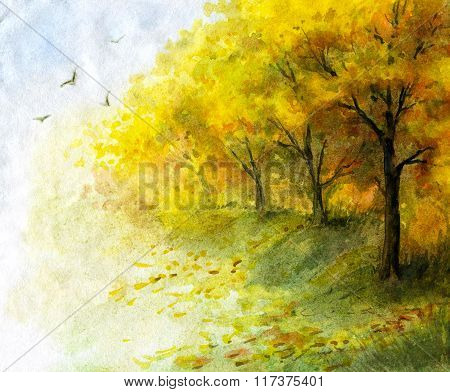 Autumn View With Yellow Trees.