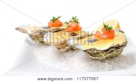 oysters with sauce. Header for website