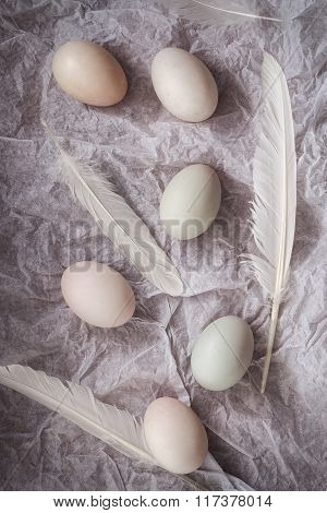 Duck Eggs Flat Lay Still Life With Food Stylish