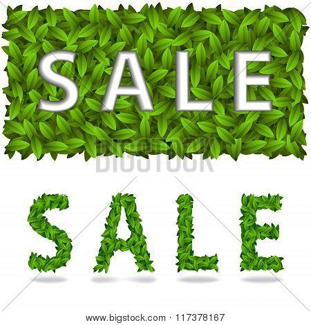 Sale Title Spring
