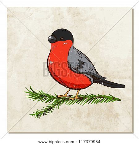 Bullfinch sits on a branch tree with old paper background. Winter or festive background for your design. Vector illustration.
