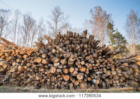Big pile of logs