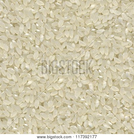 Seamless texture of rice grains