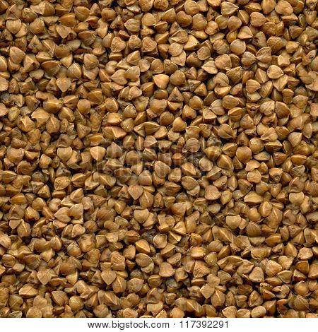 Seamless texture of buckwheat