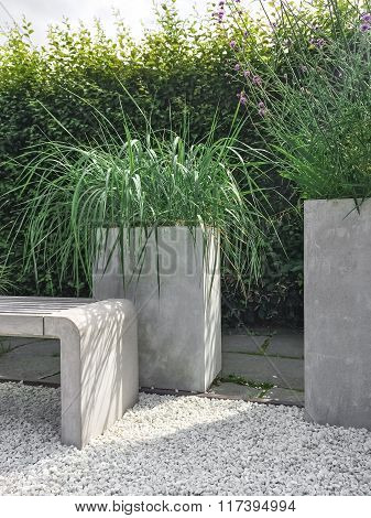 Garden With Decorative Grass, Concrete And Stone