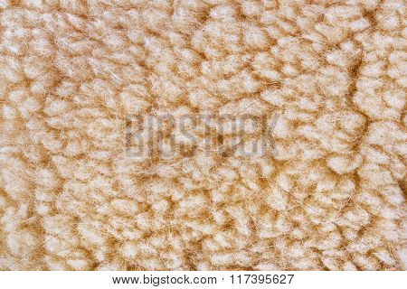 Woolly sheep fleece texture - fur background