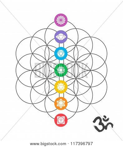 Colorful Chakra Icons On Sacred Geometry Design