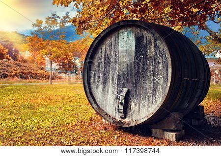 Fall Landscape With Old Wooden Wine Barrel