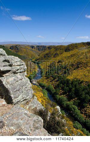 Scenic Gorge Landscape