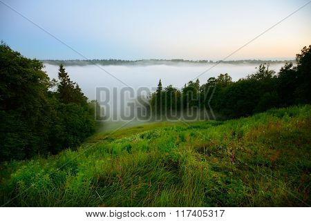 View of strong fog in a green spring river valley in Sigulda