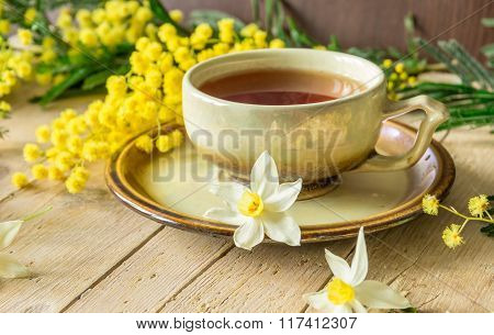 Cup Of Tea Decorated With A Sprig Of Mimosa