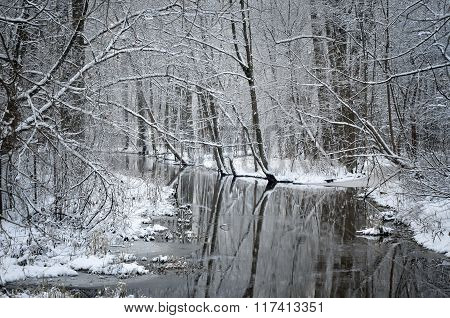 Winter river scene with trees reflecting in clear water