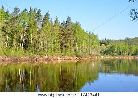 Gauja River In Spring Morning In Sigulda, Lativa