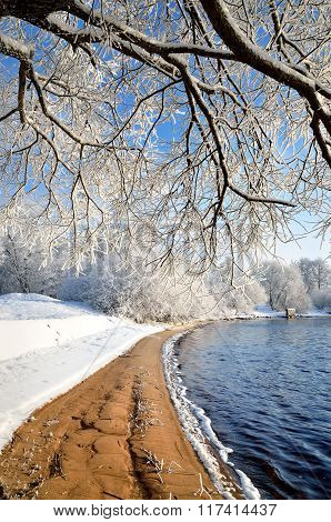 View of river bank in winter with overhanging snow-covered tree branch
