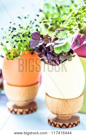 Healthy Easter Vibrant Decoration