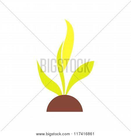 Plant seedling flat icon