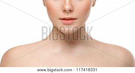 Lips Nose Chin Cheeks. Beauty Face Portrait Young Beautiful Woman