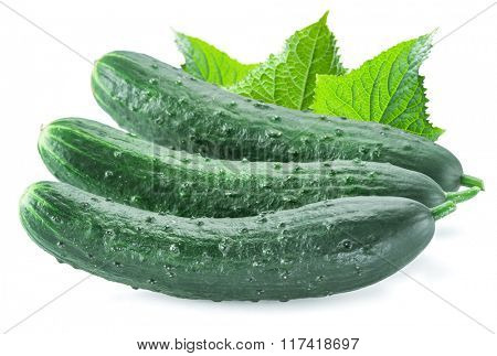 Cucumbers with leaves on the white background.