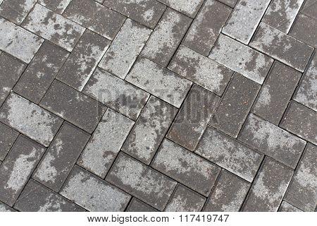 Grey Wet Pavement Closeup.