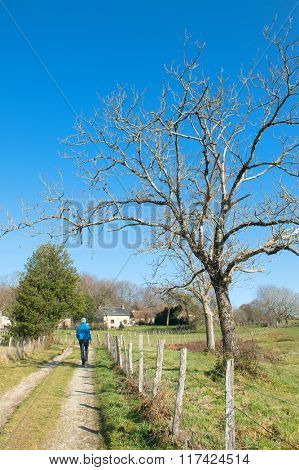 Man walking in French nature landscape