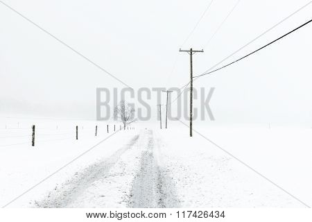 Empty Rural Road during Snowstorm