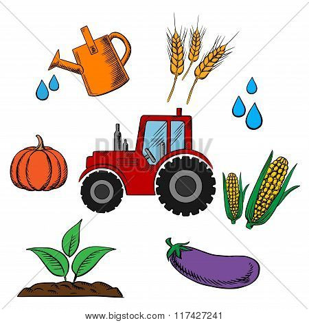 Agriculture industry and farming food
