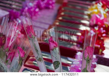 A Close-up Photo Of Pink Roses All Packaged In Singular Roses For Valentine's Day
