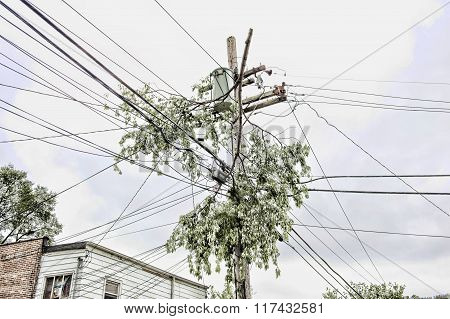 Electrical Pole Outdoors