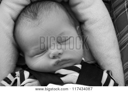 Baby Sleeping In Carseat
