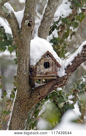 Weathered Snow Covered Birdhouse