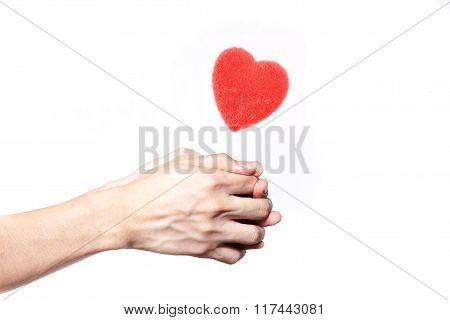 Human Hands Giving Love In White Isolated Background - Giving Love Concept
