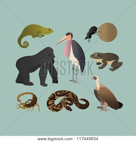 Vector Set Of Different African Animals. Animals of the African savanna Gorilla, Scorpio, Scarab twi