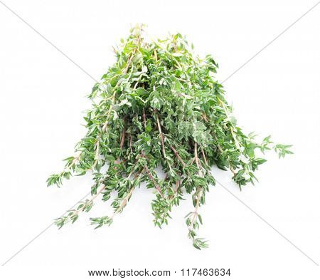 Fresh garden thyme herb. Isolated on white background