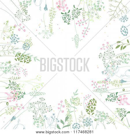 Square frame with contour  herbs on white. Pattern with flowers for your summer design, floral greeting cards, posters.