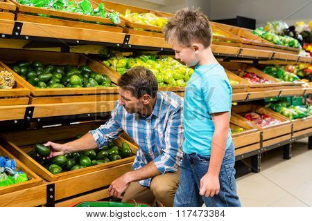 Father and son doing shopping in grocery store