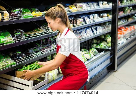 Female worker putting vegetable box in shelf in grocery store