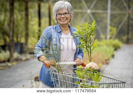 Beauitful mature woman buying plants in a greenhouse