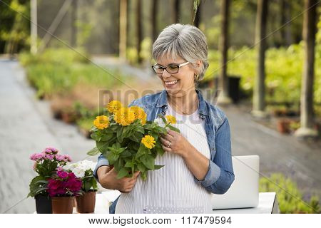 Beautiful mature woman working in a greenhouse holding flowers on her hands